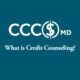 What is credit counseling
